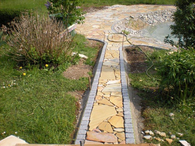 pool-teich-2011-438