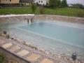 pool-teich-2011-441