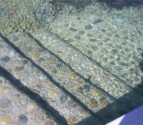 Schwimmteich Stufen