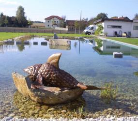 Schwimmteich mit Stein