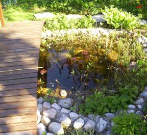 Teich mit Brücke
