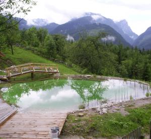 Schwimmteich in den Bergen