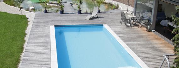 Pool und Schwimmteich