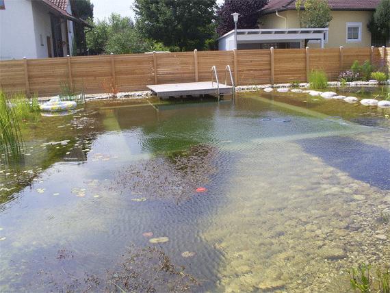 Schwimmteich-Pool